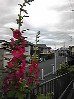 台風と共に