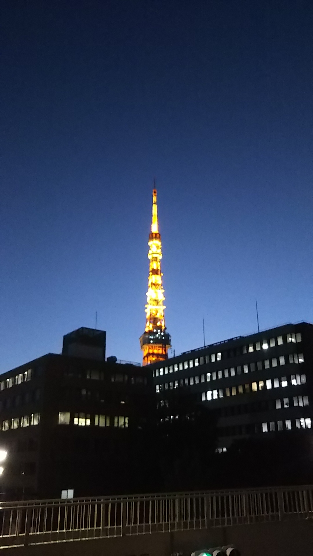 東京➡横浜